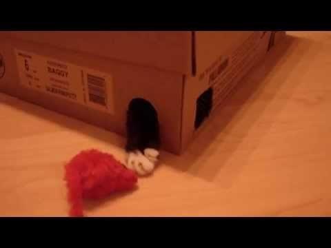 Kätzchen spielt mit Maus