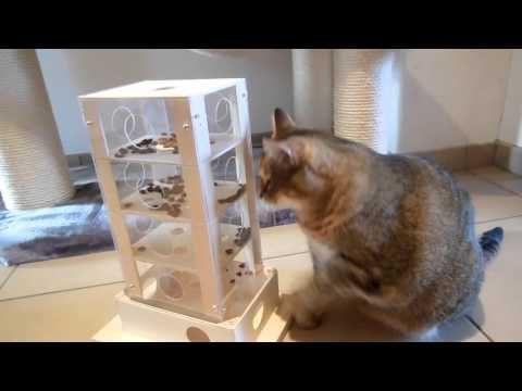 Intelligenter Spielturm für Katzen