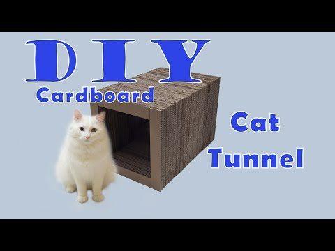 DIY Kratztunnel für Katzen