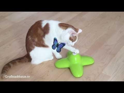 Katzenspielzeug Funny Butterfly