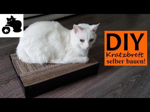 Katzen Kratzbrett Selber Bauen Diy Katzenspielzeug Selber Machen Diy Kratzbrett Selber Machen